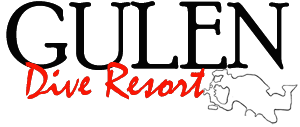 Gulen-logo-web-s