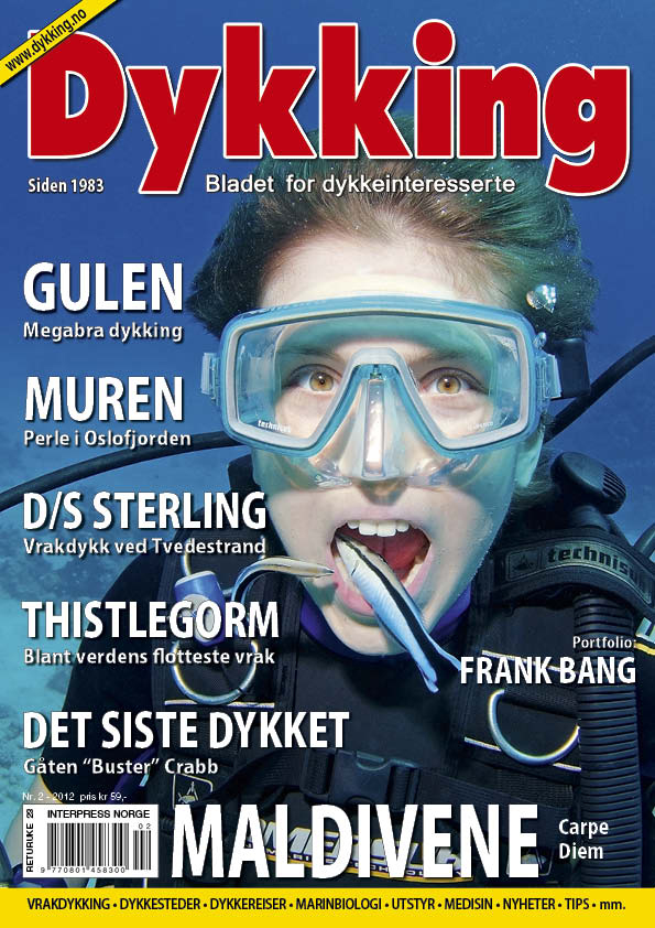 Dykking 2 2012 Cover